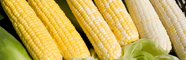 Recipe: Vegan Corn Smash & Corn, Tomato, and Zucchini Salad